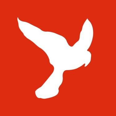 Jura Falconis Logo